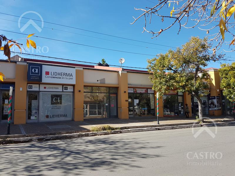 Foto Local en Alquiler en  Centro,  Merlo  Pringles al 500