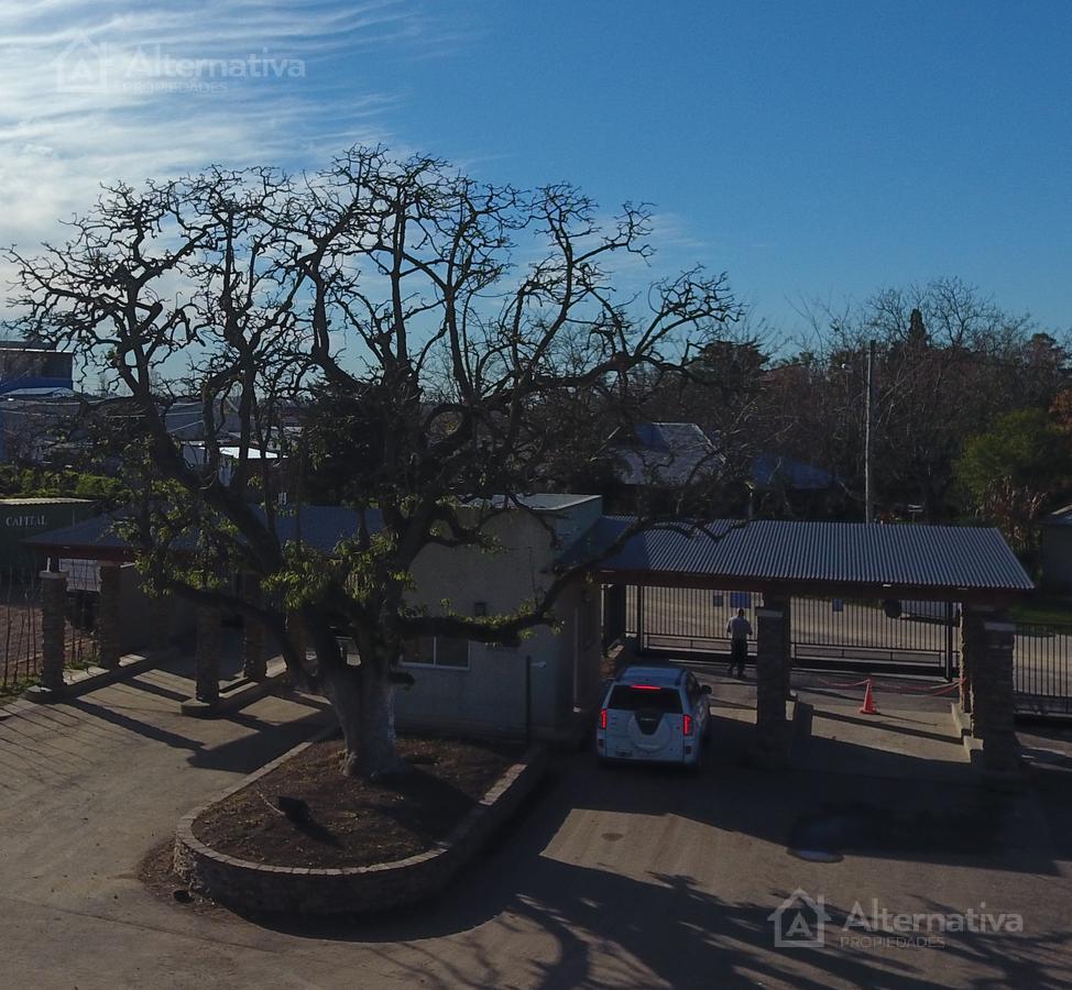 Trinidad 500, Manzanares, Pilar