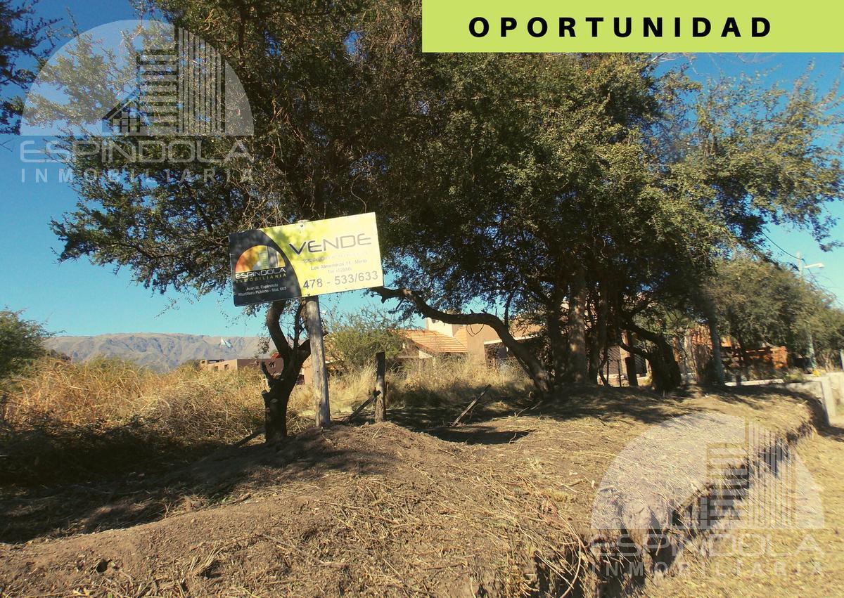 Foto Terreno en Venta en  Centro,  Merlo  Rodeo de los Cocos al 1000