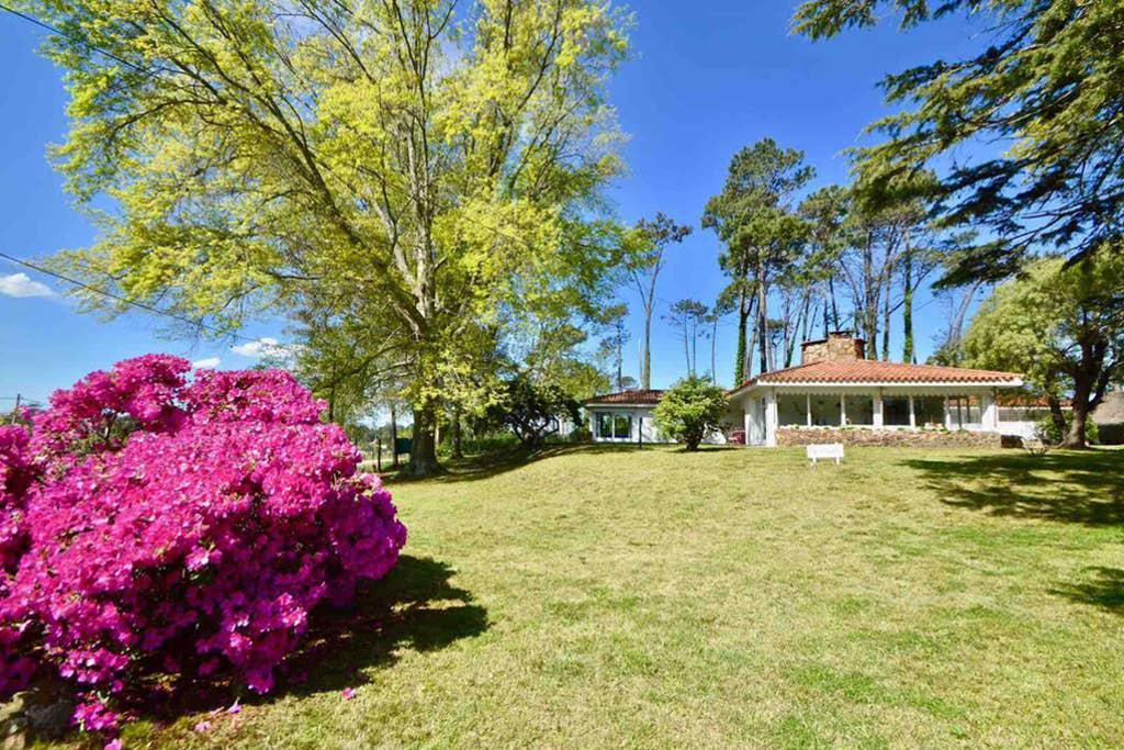 Foto Casa en Alquiler en  Punta del Este ,  Maldonado  Venta y Alquiler Casa - Punta del Este - Gran Terreno totalmente parquizado con pileta