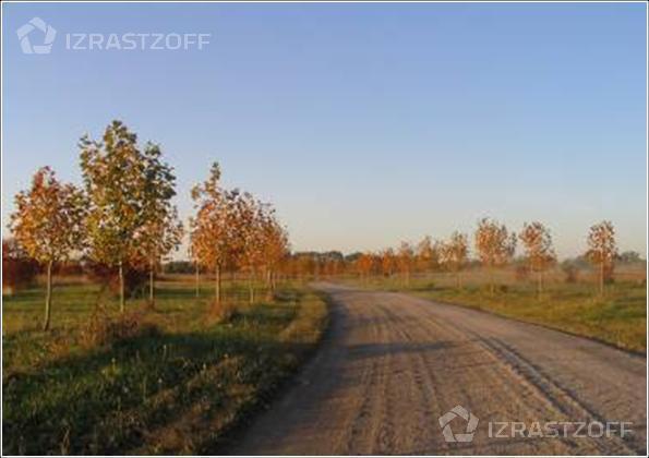 Campo-Venta-Pilar-Ruta 28, 60 hectáreas