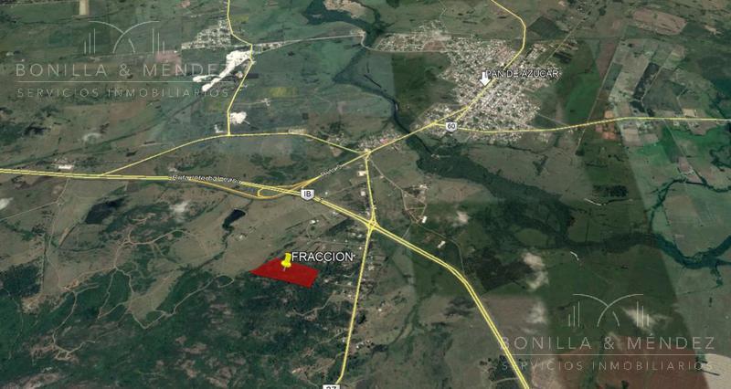 Foto Campo en Venta en  Piriápolis ,  Maldonado  Ruta 37 casi Ruta Interbalnearia