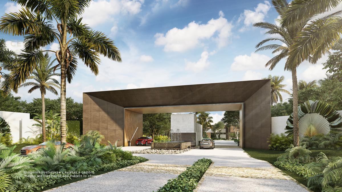 Quintana Roo Terreno for Venta scene image 1