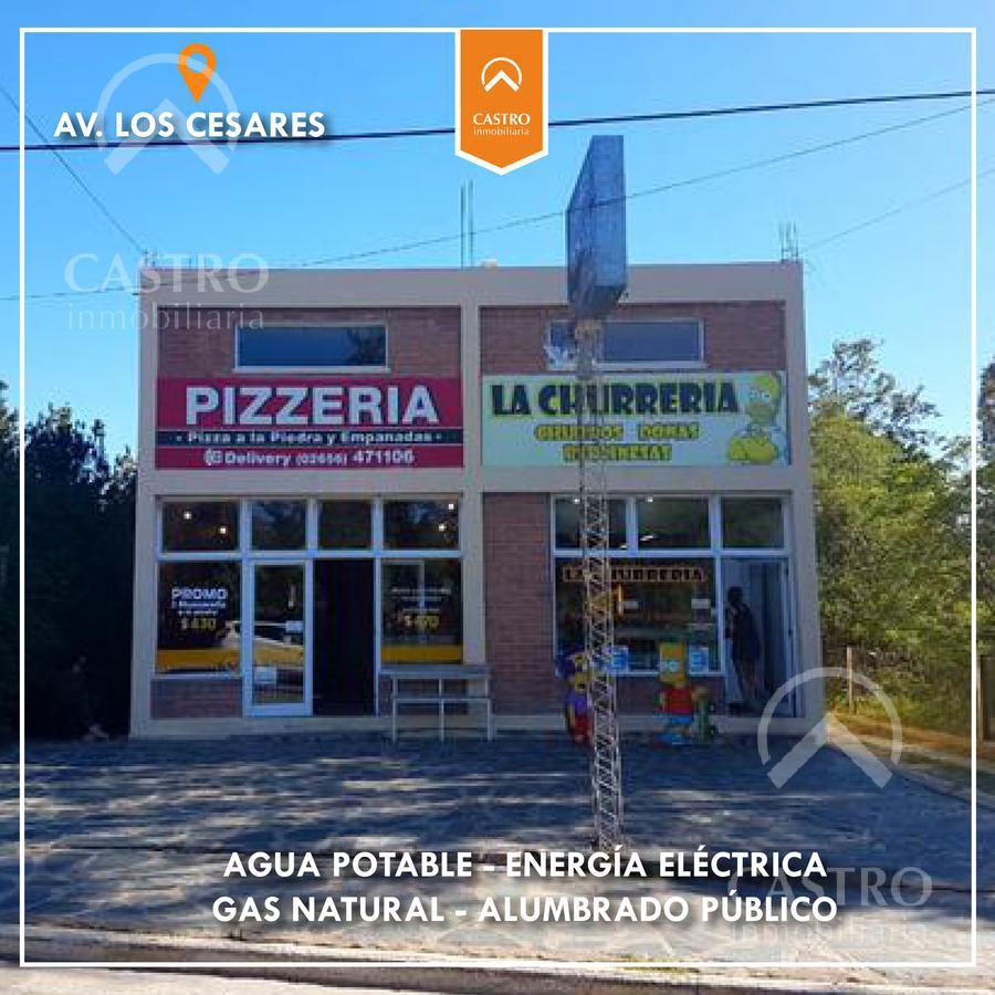 Foto Local en Venta en  Merlo,  Junin  Av. de los Cesares