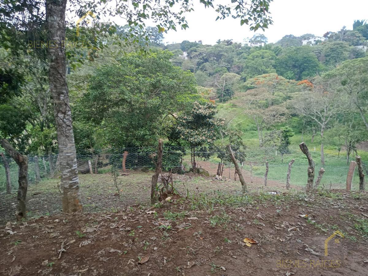 Foto Terreno en Venta en  Xalapa ,  Veracruz  Venta de terreno zona Animas, cercano a la Av. Chedraui Caram y Prol. Sebastian Bach