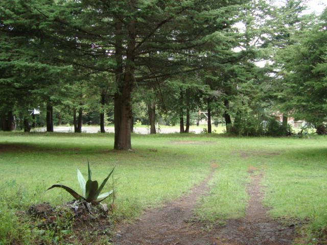Foto Terreno en Venta en  Fraccionamiento Bosques de San Cayetano,  Mineral del Monte  Fraccionamiento Bosques de San Cayetano