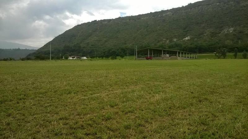 Foto Quinta en Venta en  Yaruqui,  Quito  YARUQUI