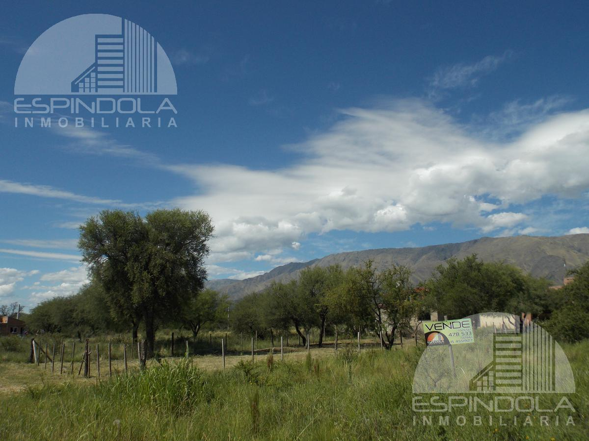 Foto Terreno en Venta en  Merlo,  Junin  B° Los Troncos
