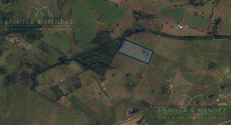 Foto Campo en Venta en  Pan de Azúcar ,  Maldonado  Pan de Azúcar rural ruta 9