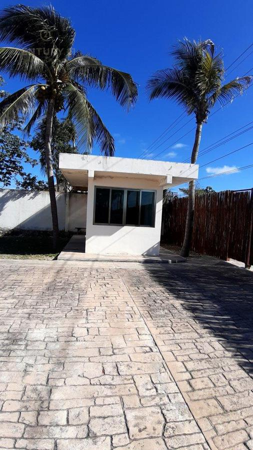Tulum Bussiness Premises for Sale scene image 7