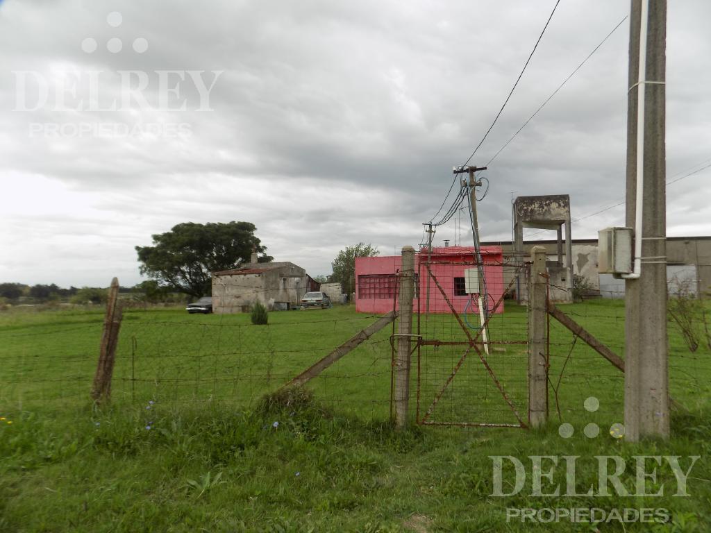 Foto Local en Venta | Alquiler en  Otras ,  Montevideo  CNO MENDOZA entre Las Paz y Las Piedras