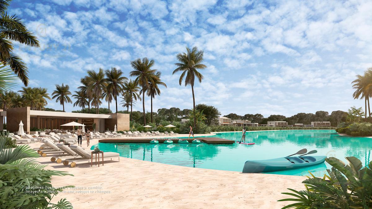 Quintana Roo Terreno for Venta scene image 7