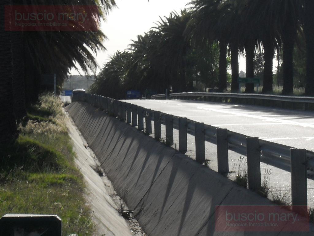 Foto Campo en Venta en  Colonia del Sacramento ,  Colonia  Colonia del Sacramento