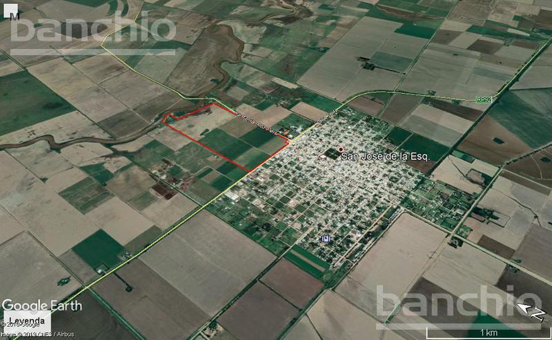 106 ha San Jose de la Esquina, San Jose De La Esquina, Santa Fe. Venta de División campos - Banchio Propiedades. Inmobiliaria en Rosario