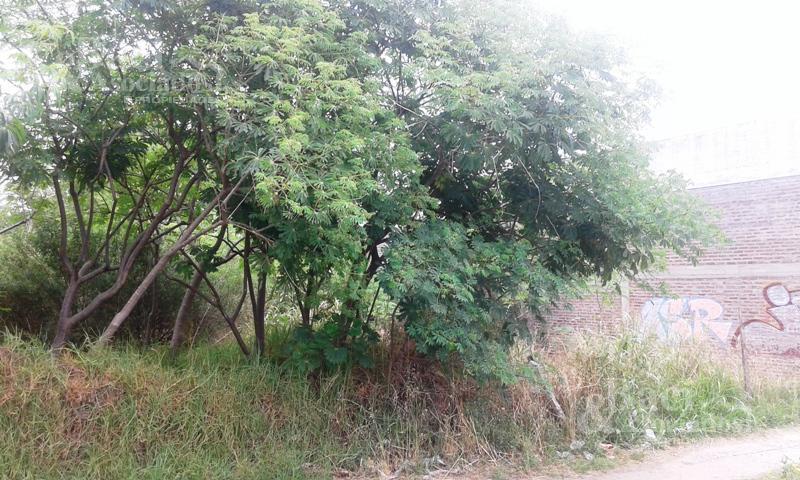 Foto Terreno en Venta en  Ezeiza ,  G.B.A. Zona Sur  Ruta 205 Nº 724