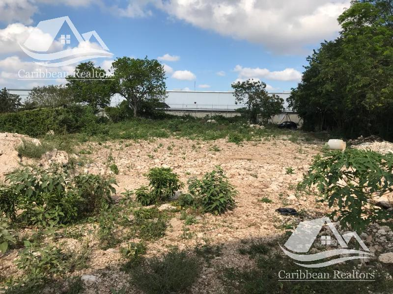 Foto Terreno en Renta en  Supermanzana 104,  Cancún  Terrenos en Venta en Cancun Centro
