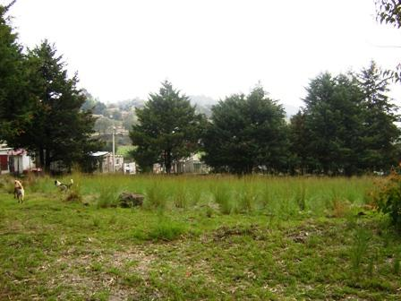 Foto Quinta en Venta en  San Miguel Topilejo,  Tlalpan  TLALPAN, San Miguel Topilejo.TERRENO 22,000 m2.  CON  SERVICIOS 2.2 hectáreas. Uso: Agroindustria, BODEGA