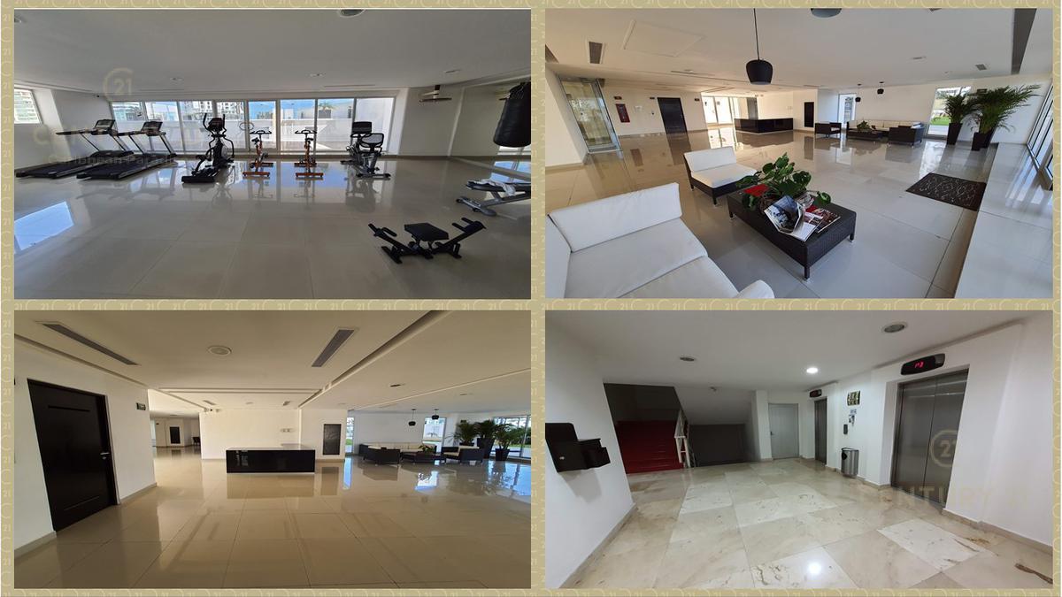 Cancún Centro Apartment for Rent scene image 11