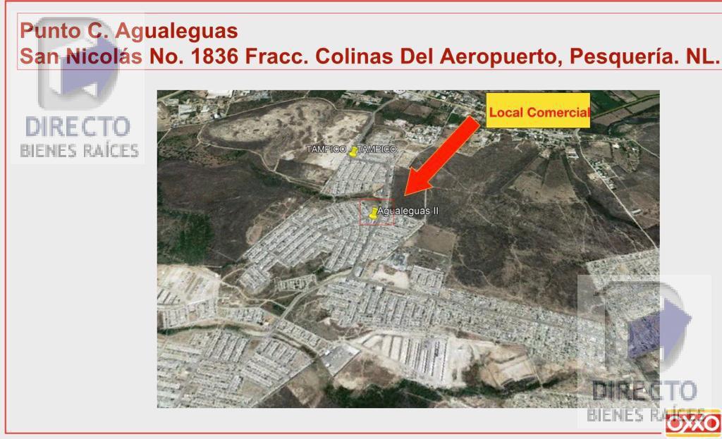 Foto Local en Renta en  Colinas del Aeropuerto,  Pesquería  San Nicolas al 1800