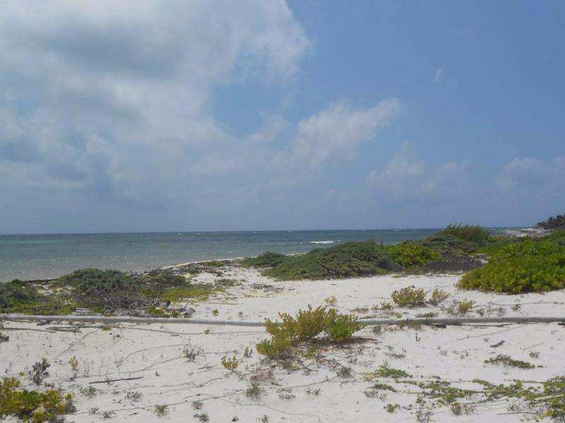 Mahahual Land for Sale scene image 8