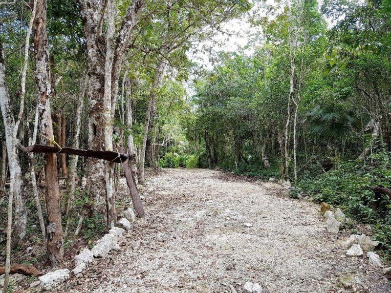 Ciudad Chemuyil Land for Sale scene image 3