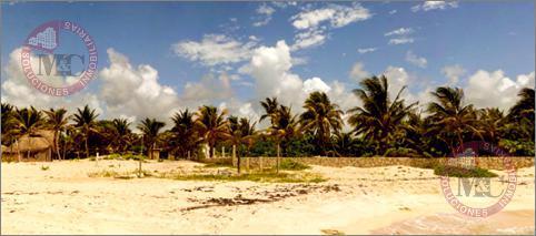 Foto Terreno en Venta en  Playa del Carmen ,  Quintana Roo  CORPAG PLAYA DEL SECRETO