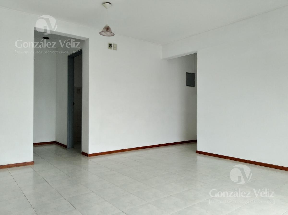 Foto Casa en Alquiler en  Carmelo ,  Colonia  Av. Ansina y Av. Italia - Edif. Ibirapitá