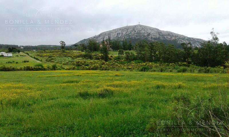 Foto Campo en Venta en  Piriápolis ,  Maldonado  chacra  en Ruta 73 Junto al castillo de Piria
