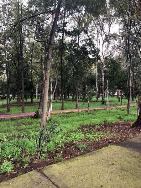 Foto Casa en Venta en  Paseos de Taxqueña,  Coyoacán  Casa para remodelar o como terreno en paseos de Taxqueña.