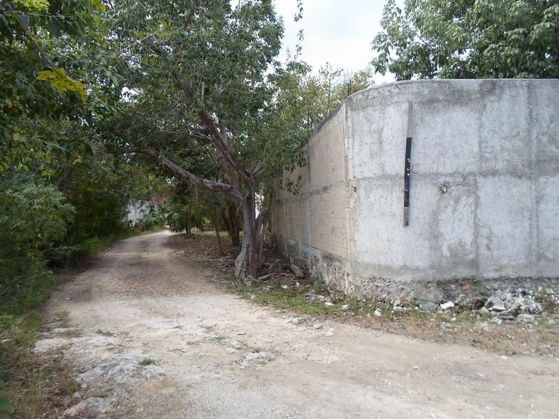 Foto Terreno en Renta en  Álamos I,  Cancún  Se Renta Terreno en Cancun Fracc Alamos a 2 Cuadras de Av Fonatur
