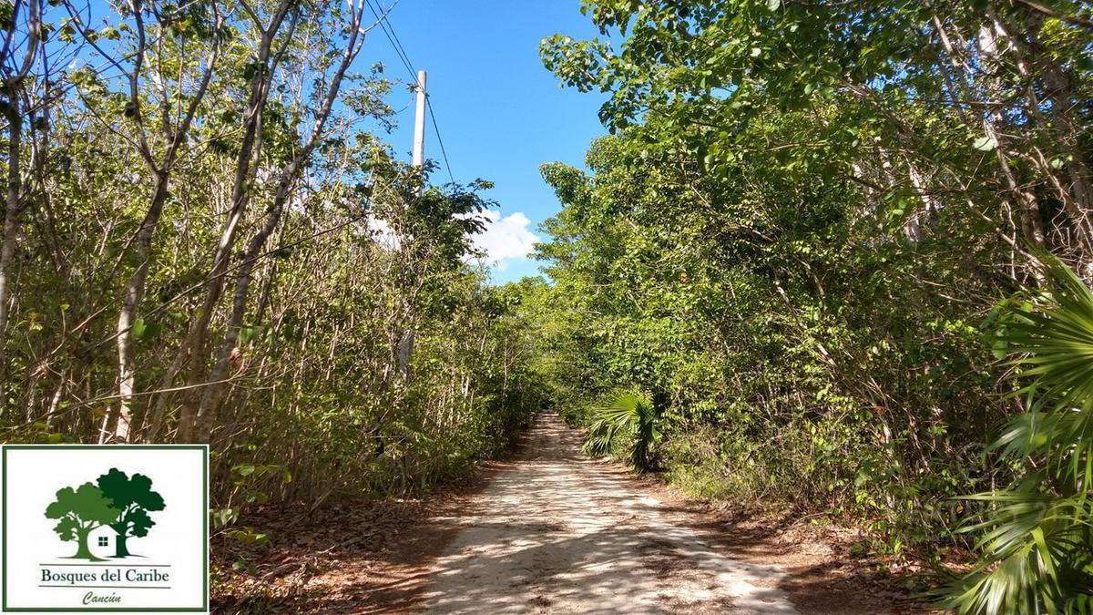 Cancún Terreno for Venta scene image 0