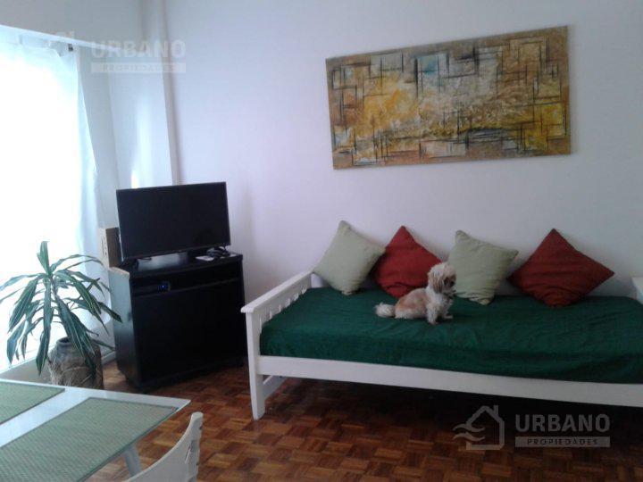 Foto Departamento en Alquiler temporario en  Palermo ,  Capital Federal  Mansilla y Av Coronel Diaz