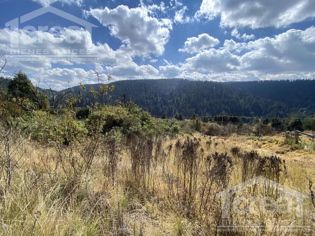 Foto Terreno en Venta en  Cañada de Alférez,  Lerma  Terreno en Venta Cañada de Alferez escriturado
