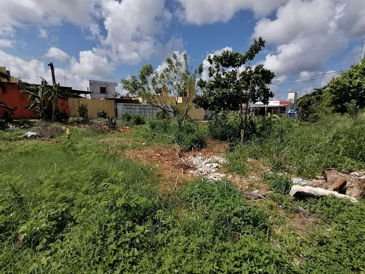 Benito Juárez Land for Sale scene image 3