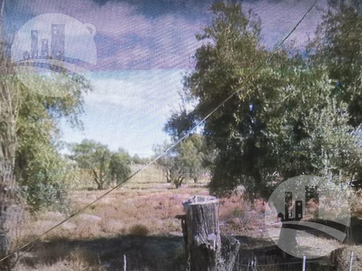 Foto Terreno en Venta en  San Rafael,  San Rafael  Terreno: 45.000 mts2