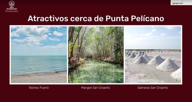 Foto Terreno en Venta en  Telchac Puerto ,  Yucatán  Lotes de inversión en Playa a la altura de San Crisanto
