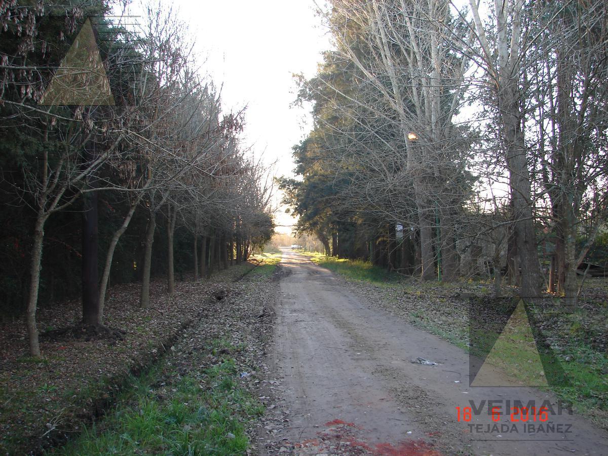 Foto Terreno en Venta en  La Plata,  La Plata  308 E/ 46 Y 48 BARRIO EL RODEO