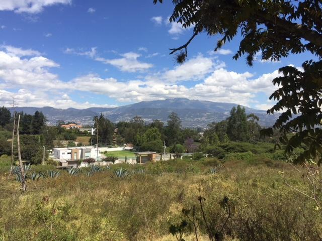 Foto Terreno en Venta en  Puembo,  Quito  Puembo Arrayanes
