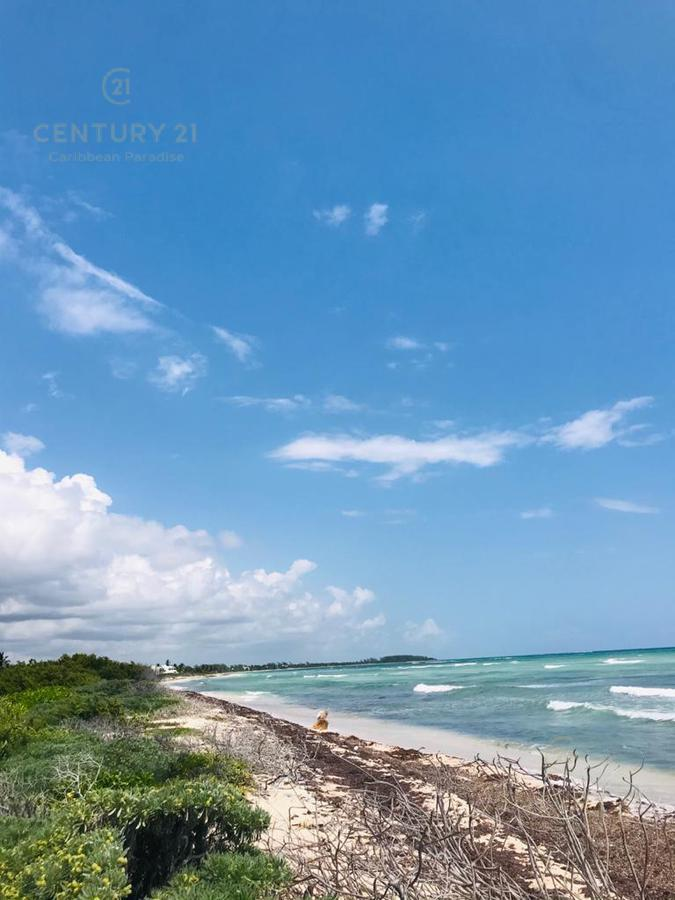 Mahahual Land for Sale scene image 9