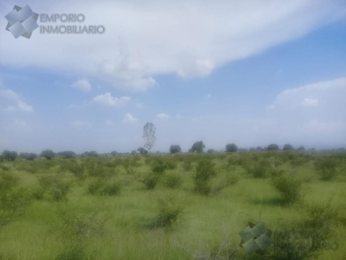 Foto Terreno en Venta en  Apaseo el Grande ,  Guanajuato  Terreno P/Inversión Venta Libramiento Norponiente $436,196,208 Serbec E2