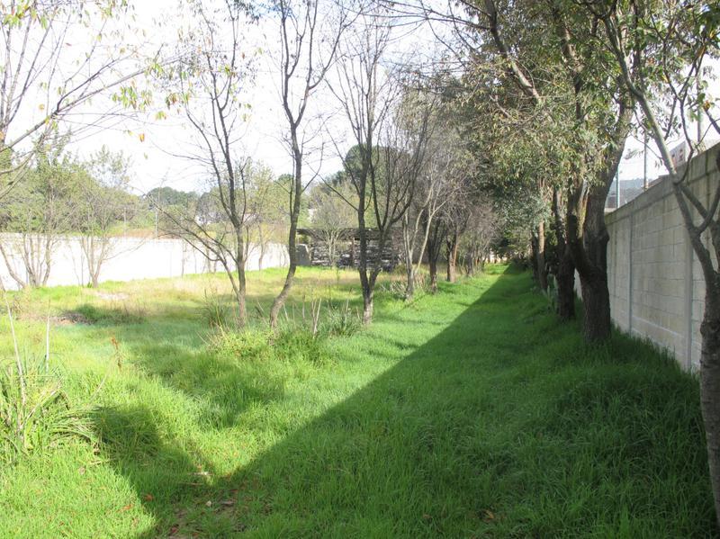 Foto Terreno en Venta en  San Miguel Ameyalco,  Lerma  TERRENO SOBRE ANTIGUA CARRETERA  MEXICO - TOLUCA  con  ESCRITURAS ( AMEYALCO)
