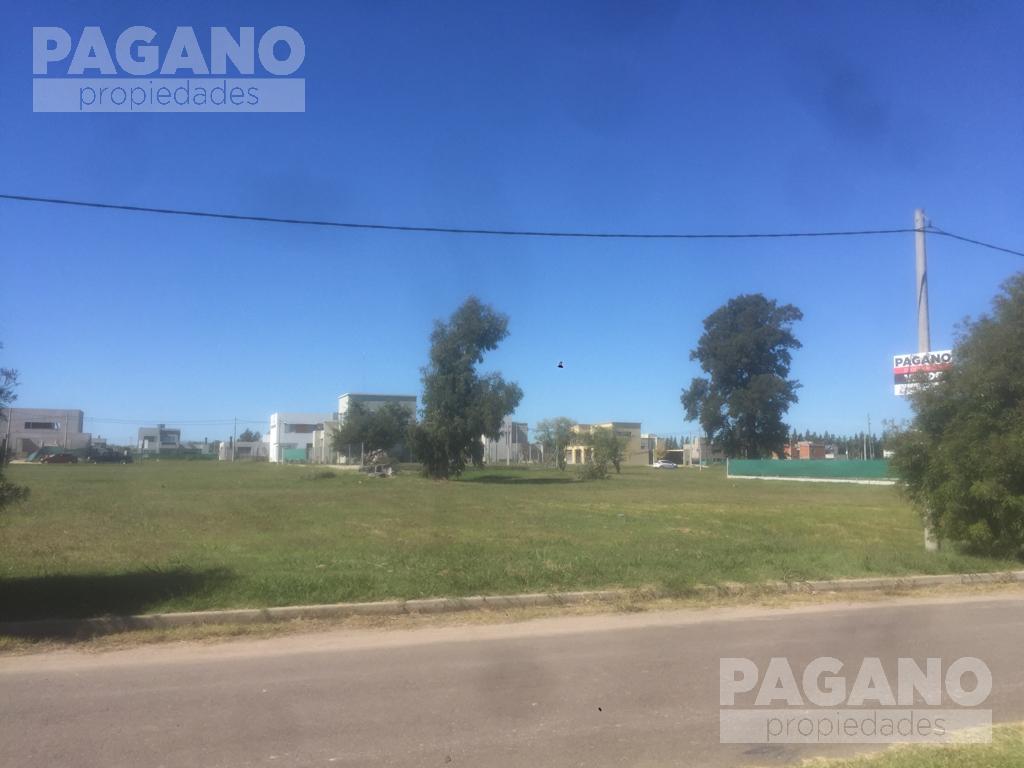 Foto Terreno en Venta en  José Hernández,  La Plata  506 e/ 137 y 138