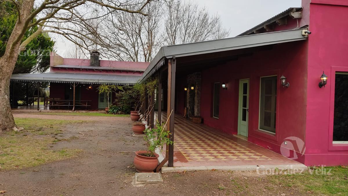 Foto Casa en Alquiler temporario en  El golf,  Carmelo  El Golf