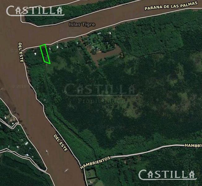 Foto Terreno en Venta en  Zona Delta Tigre,  Tigre  RIO PARANA DE LAS PALMAS entre CANAL HONDA y
