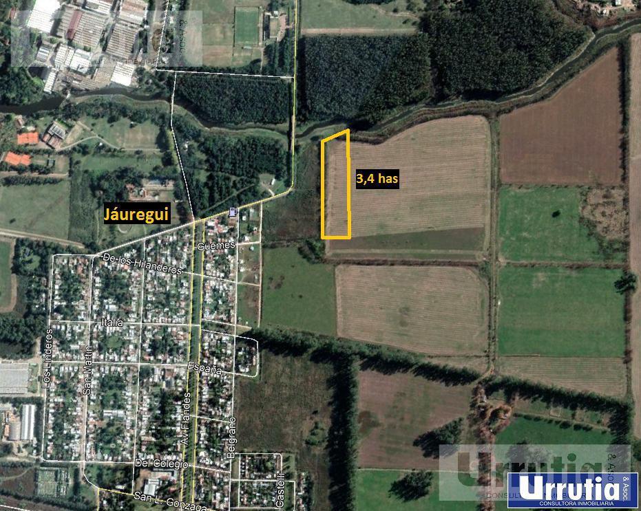 Foto Campo en Venta en  Jauregui Jose Maria,  Lujan  Jáuregui