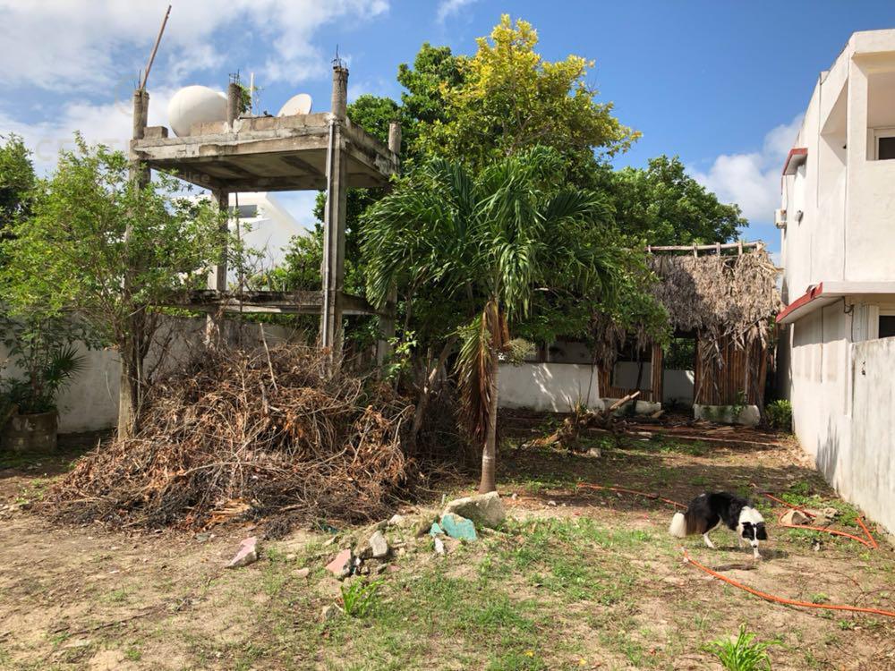 Quintana Roo Land for Sale scene image 3