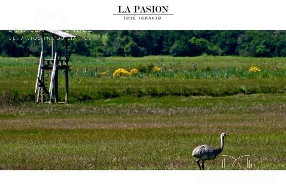 Foto Campo en Venta en  José Ignacio ,  Maldonado  José Ignacio