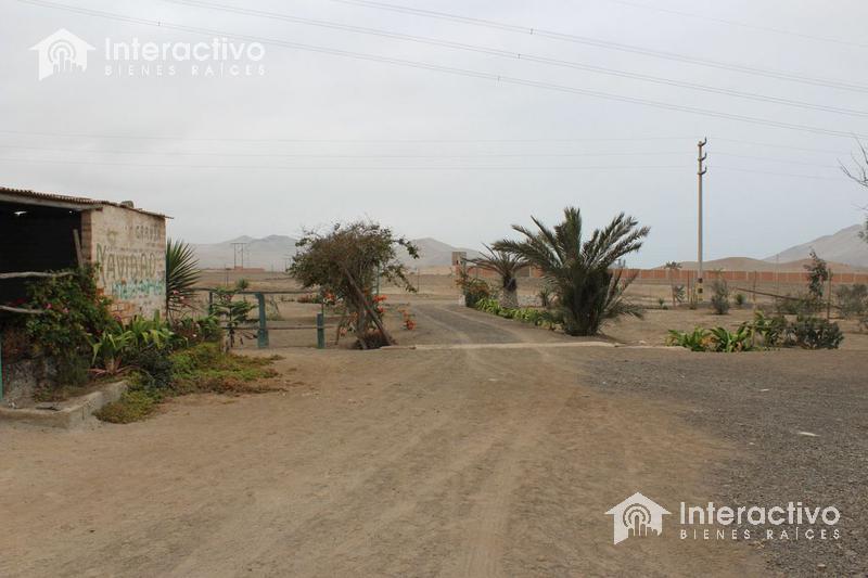 Foto Terreno en Venta en  Chilca,  San Vicente de Cañete  CHILCA - PARCELACION HUERTOS DE ORO DE SAN HILARION,ALTURA KM 65-66 de la NUEVA AUTOPISTA PANAMERICANA SUR