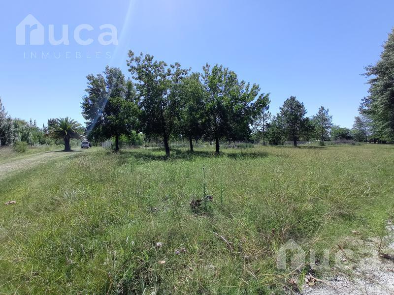 Foto Terreno en Venta en  Escobar ,  G.B.A. Zona Norte  Las Chacras, Chacras de la Oracion Mermoz Sur al 2200