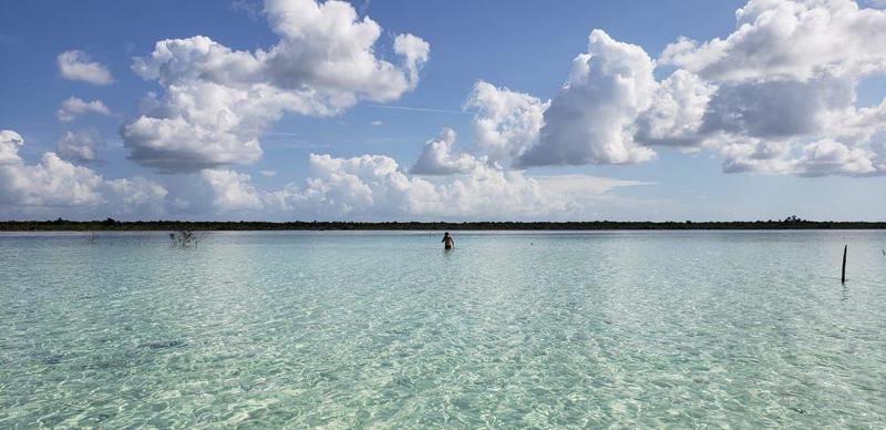 Bacalar Terreno for Venta scene image 0